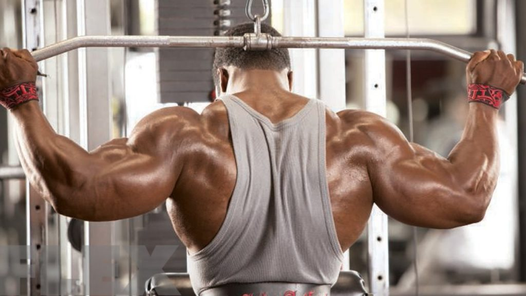 Lat Pulldowns behind Head