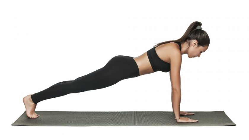 Plank Twists - Short Interval Fat Loss Exercises